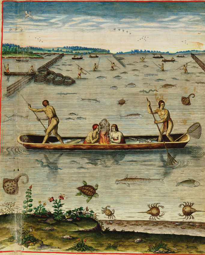 Eastern Virginia and Carolina native Americans fishing practices with Weir and netting
