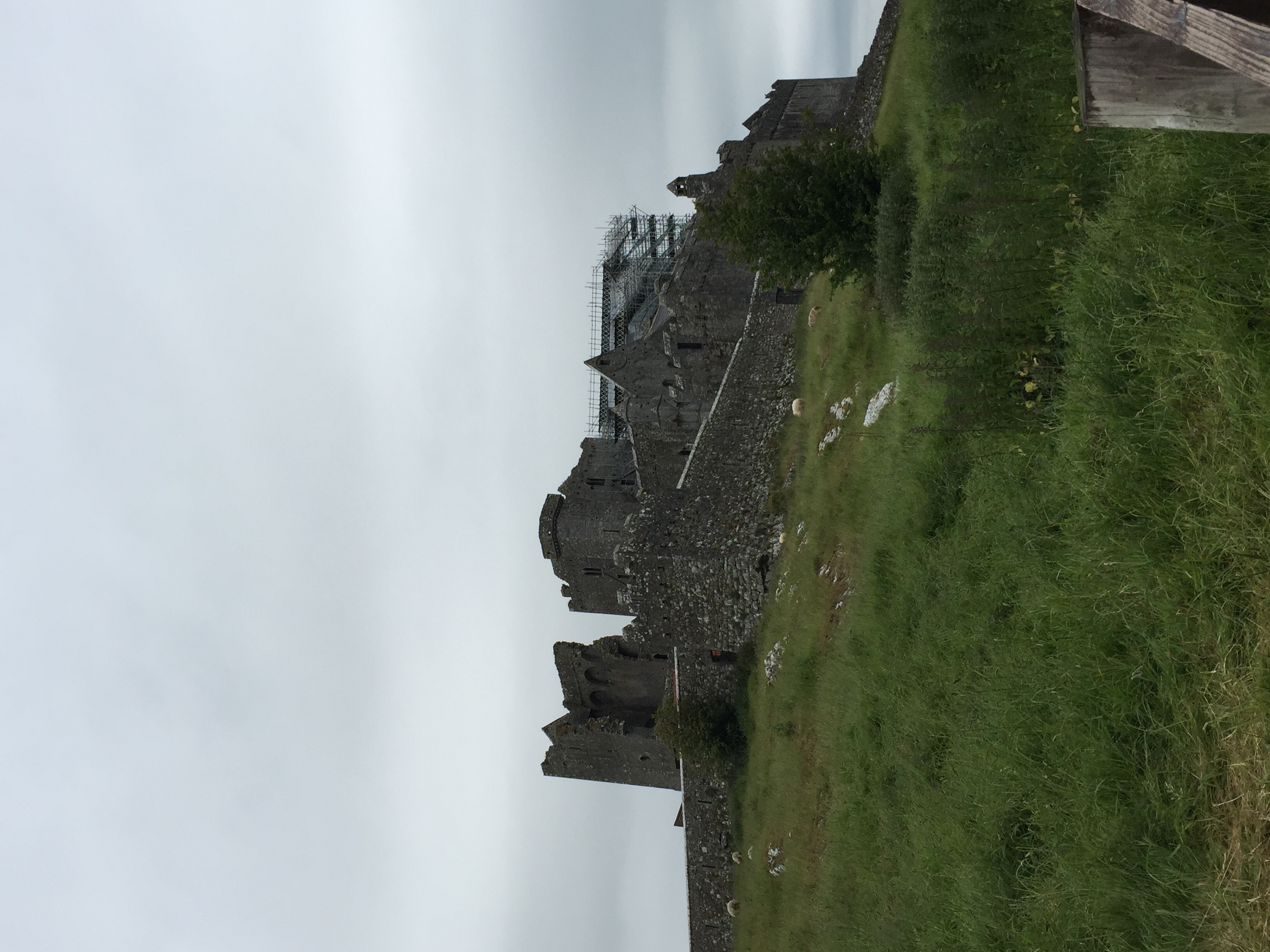 The Rock of Cashel from the walking path...