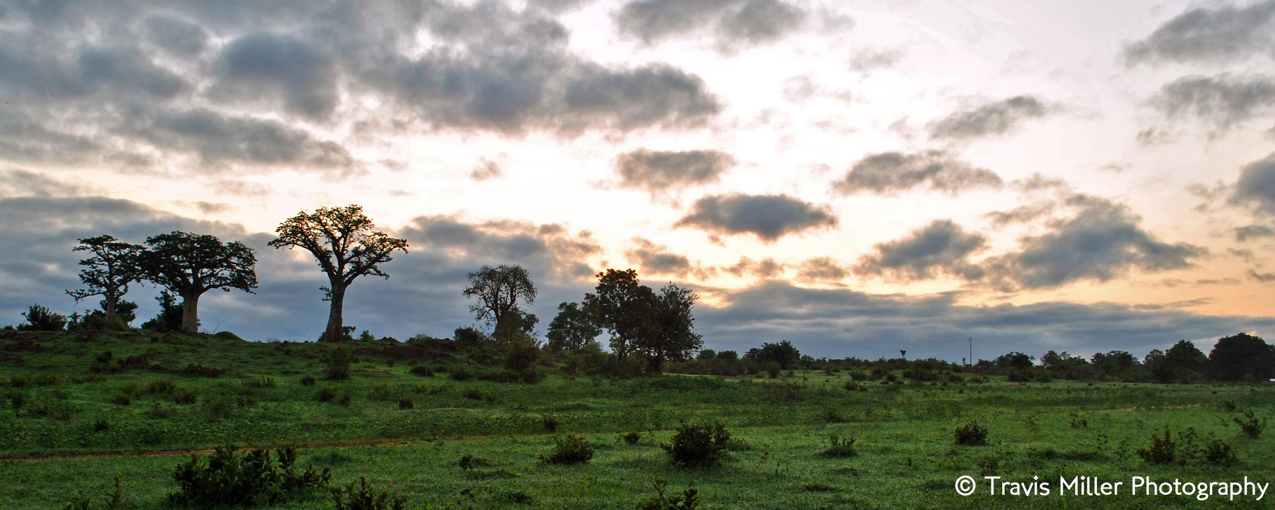 A Rainy Season Sunrise    Pakalinding, The Gambia