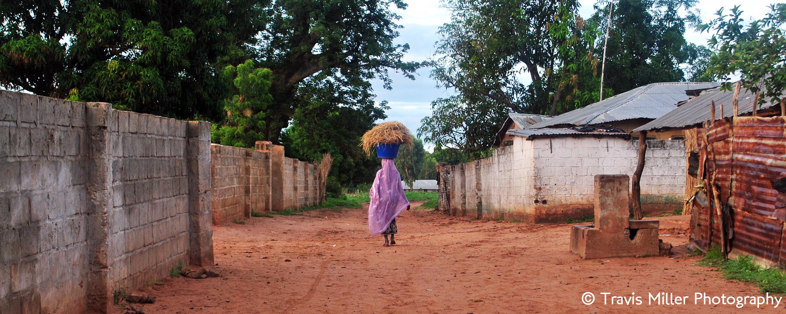 Bringing Home the Rice    Pakalingding, The Gambia