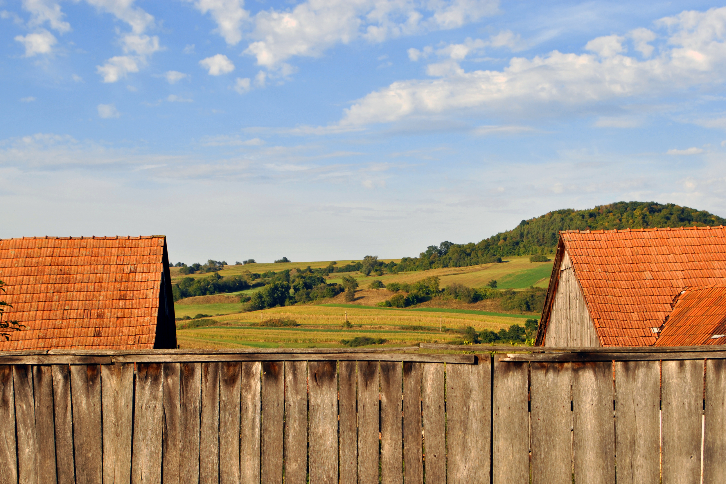 Fence and Roofs.jpg