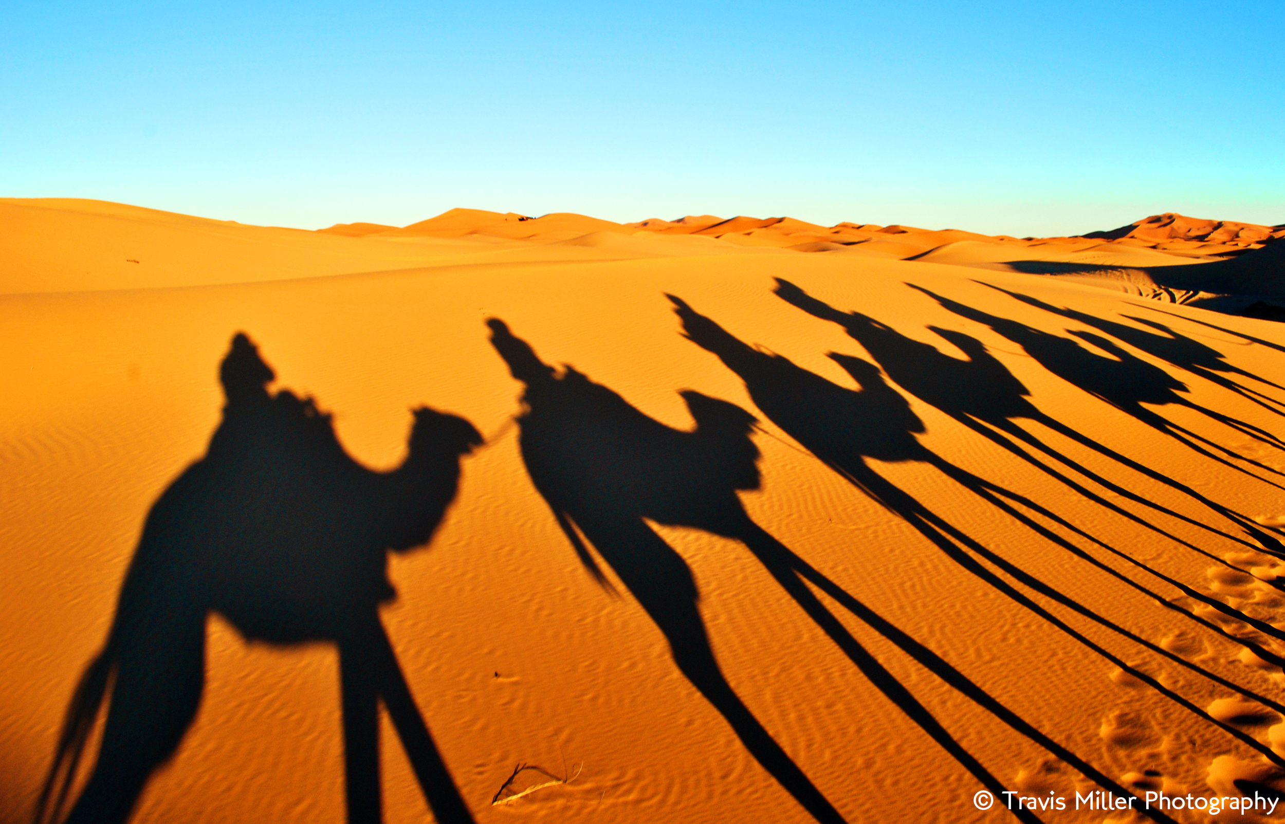 Caravan /  Saharan Desert, Morocco
