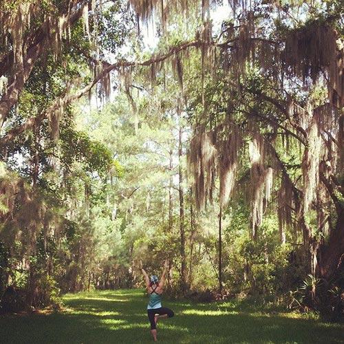 Tree Pose Giveaway 72.jpg