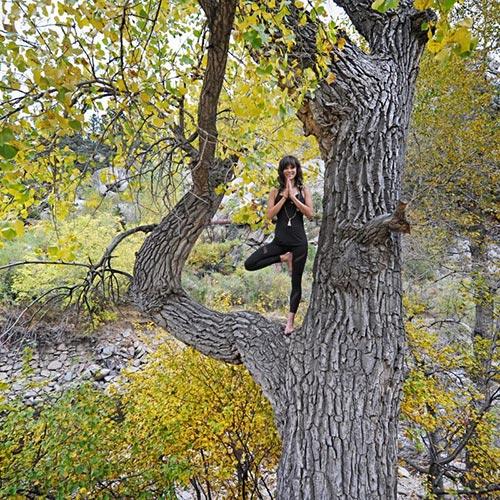 Tree Pose Giveaway 127.jpg