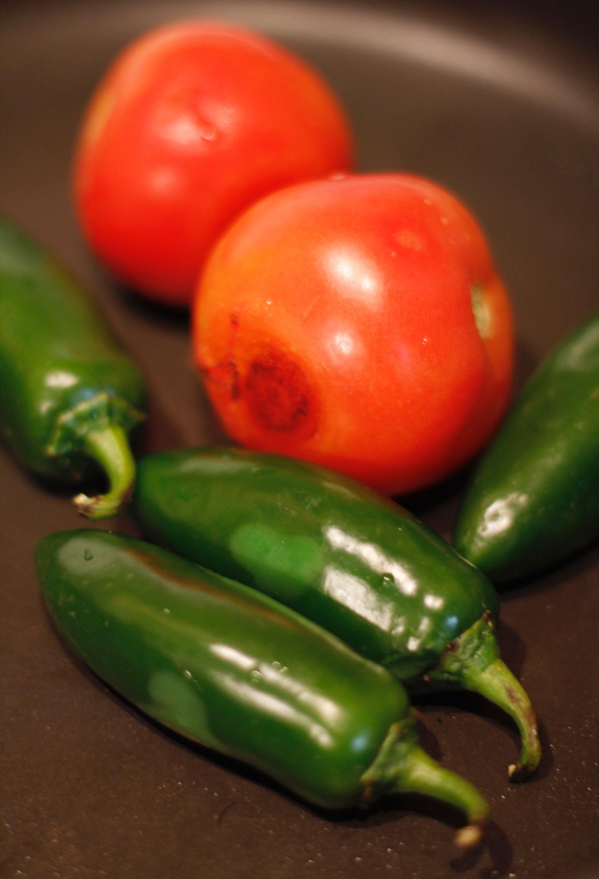 cinco de mayo salsa20.jpg