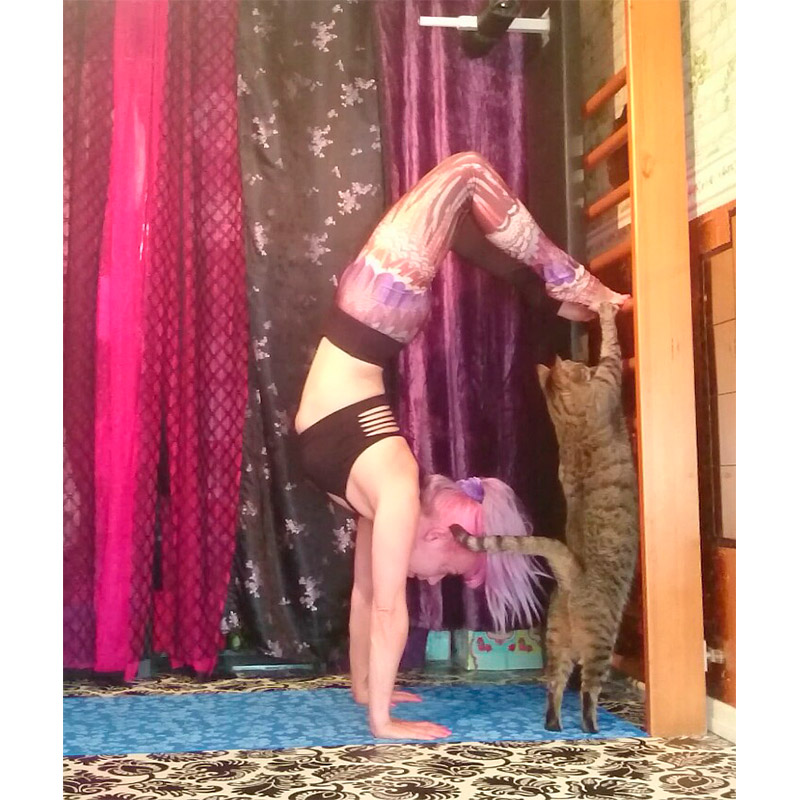 Yoga with pets 18.jpg