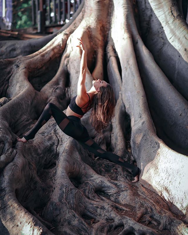 UNREAL. @thescarletfoxx living it. Yeah her clothes are cool, but THAT TREE. 📷 @lcostaphoto  #mikayogawear #livinginafairytale #meshkaya #laylatop #butthetree