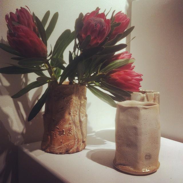 Beautiful proteas on display at #scissorspaperrock exhibition at Gladstone Community Art Gallery. Ceramics by @mudibird #australiannatives #protea