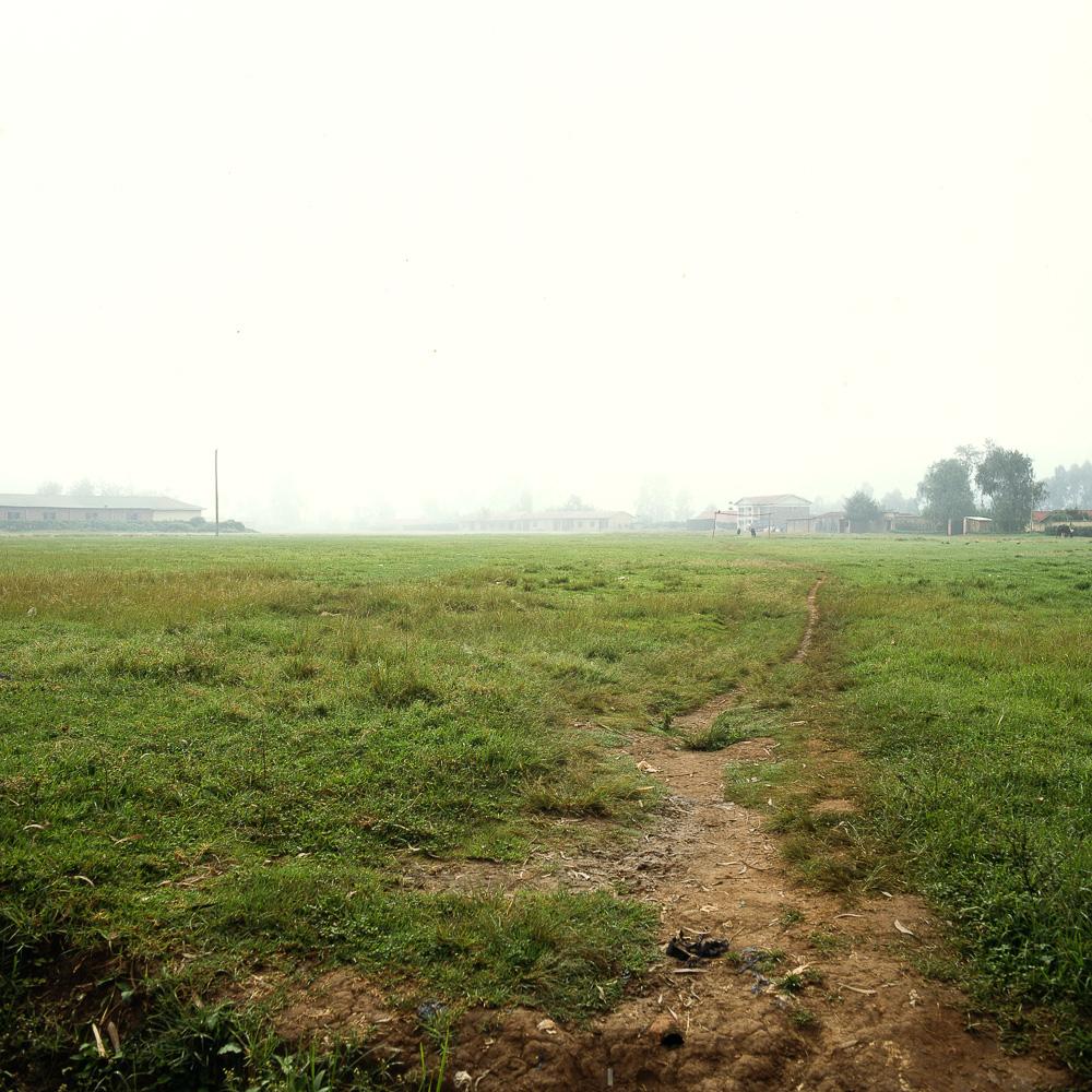 morningwalk-6.jpg