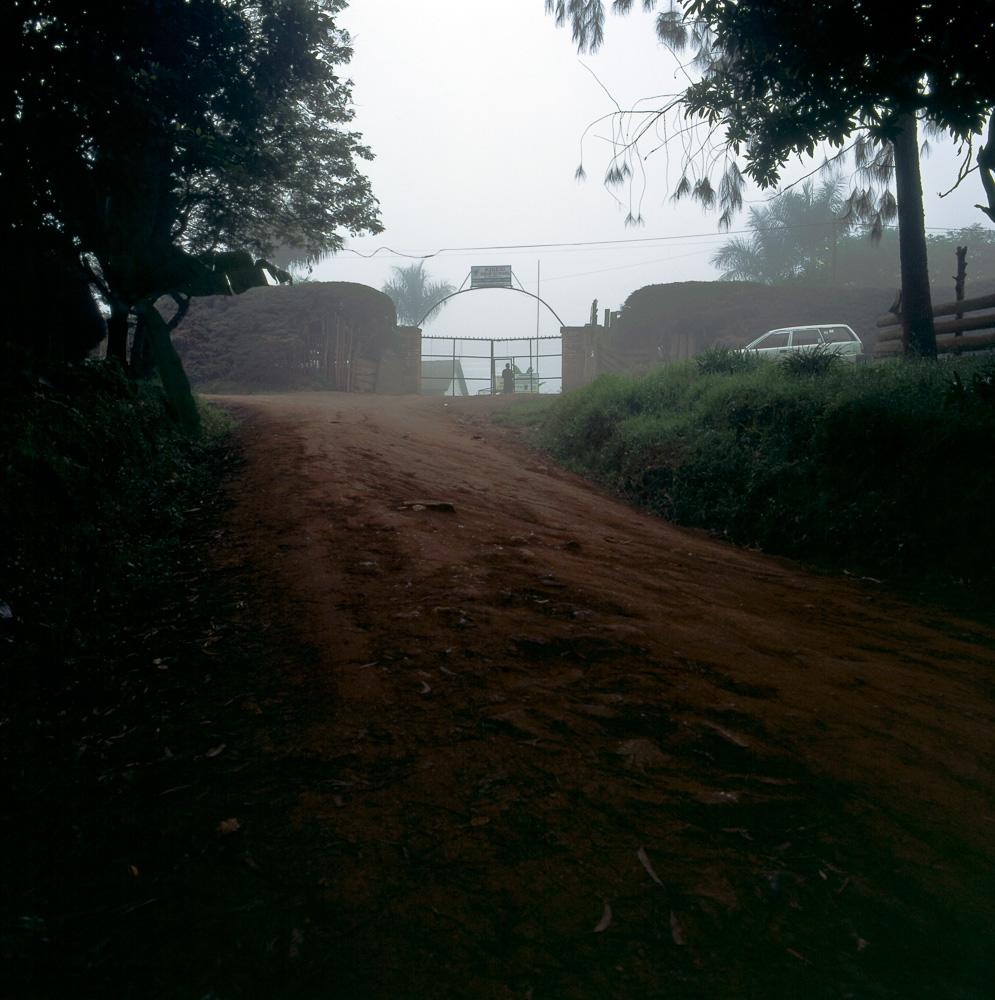 morningwalk-10.jpg