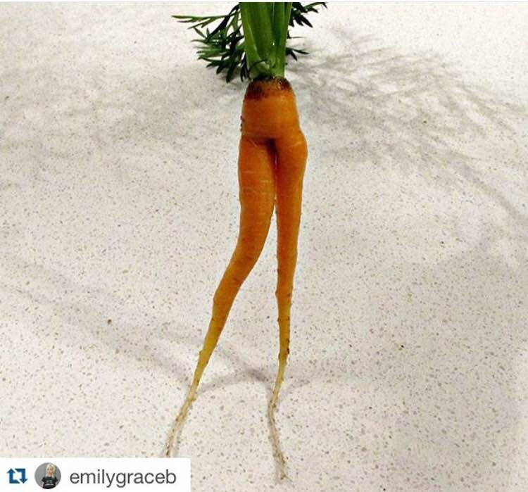 """#MyKidCantEatThis fresh carrot from the garden because it has legs."""