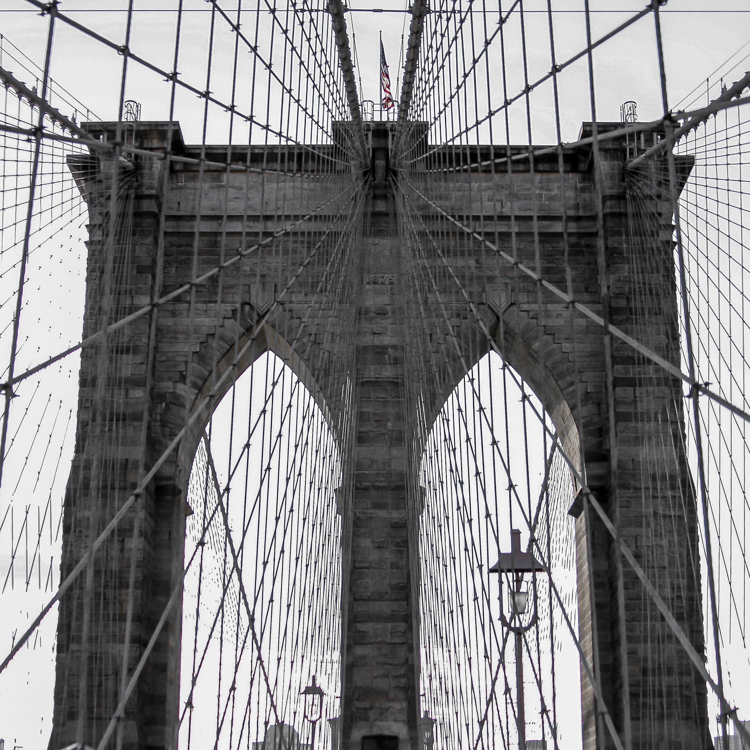 New York 20101.jpg