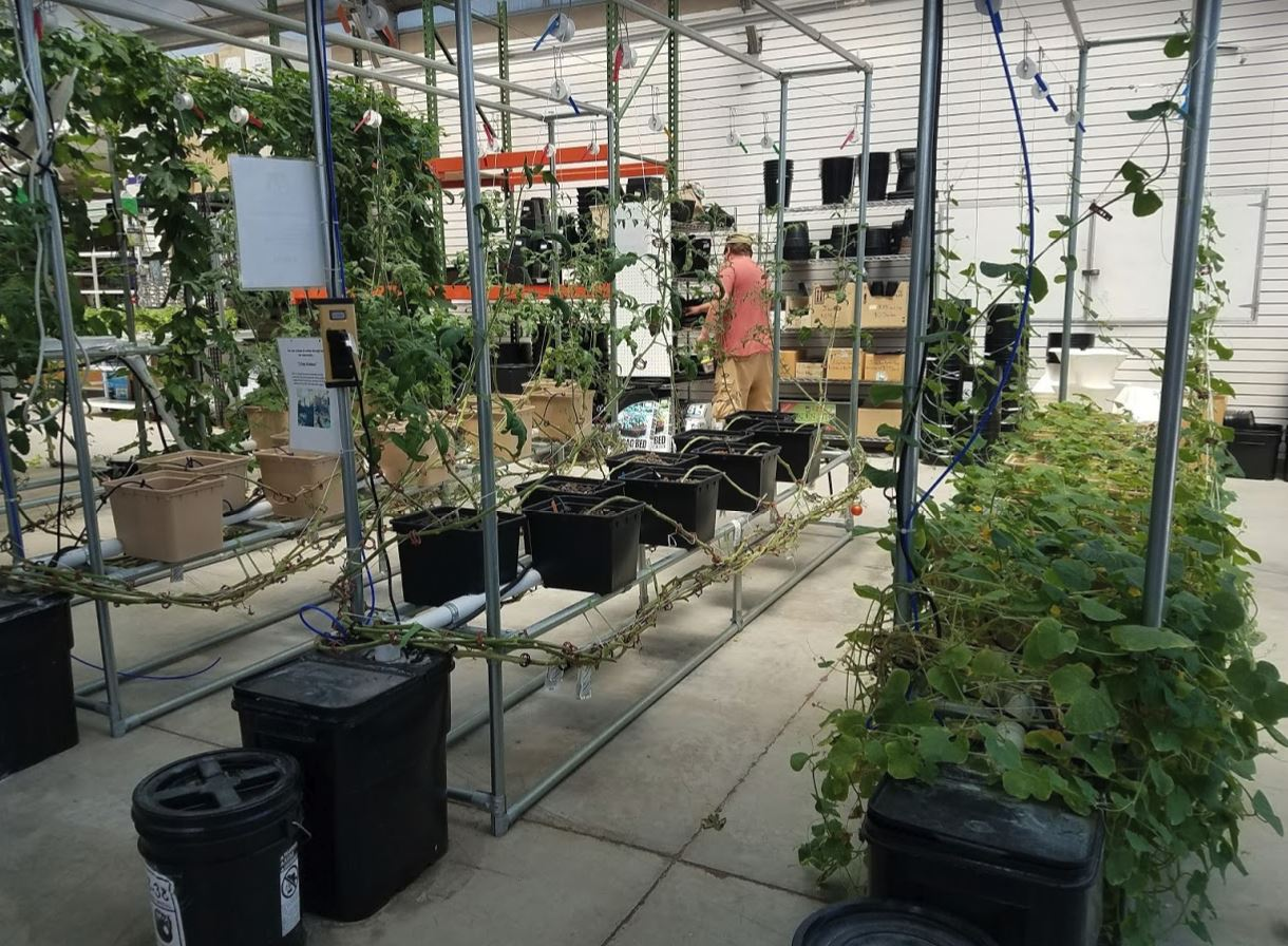 This is a setup at the local hydroponic store http://www.innovativehydroponicsupply.com/