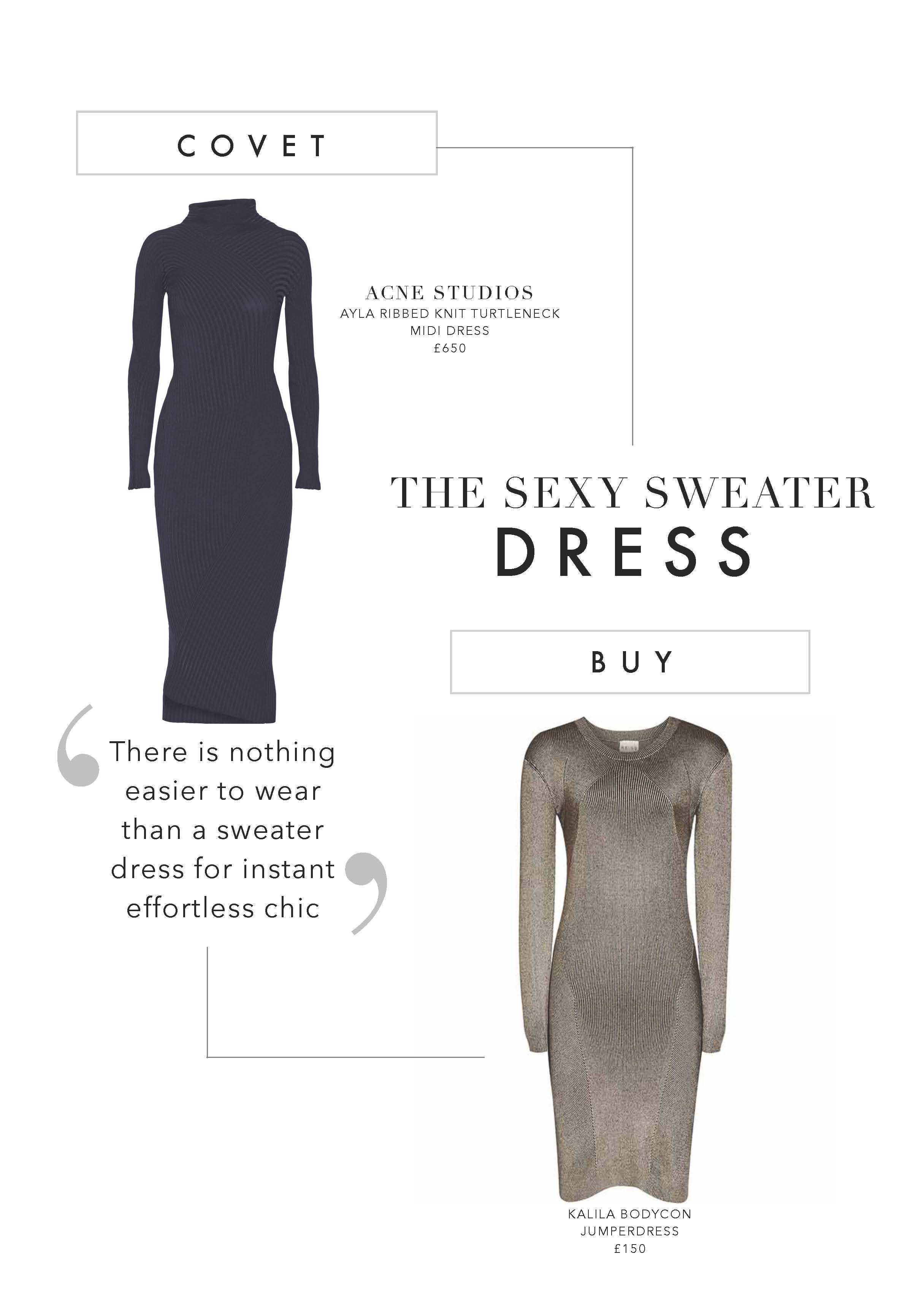The Sexy Sweater Dress.jpg