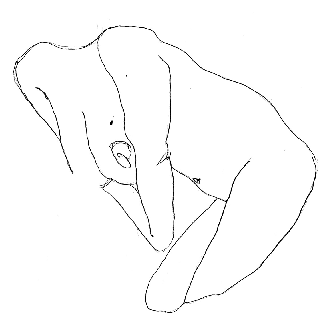 Gabriela-Sanchez-Drawing29.jpg