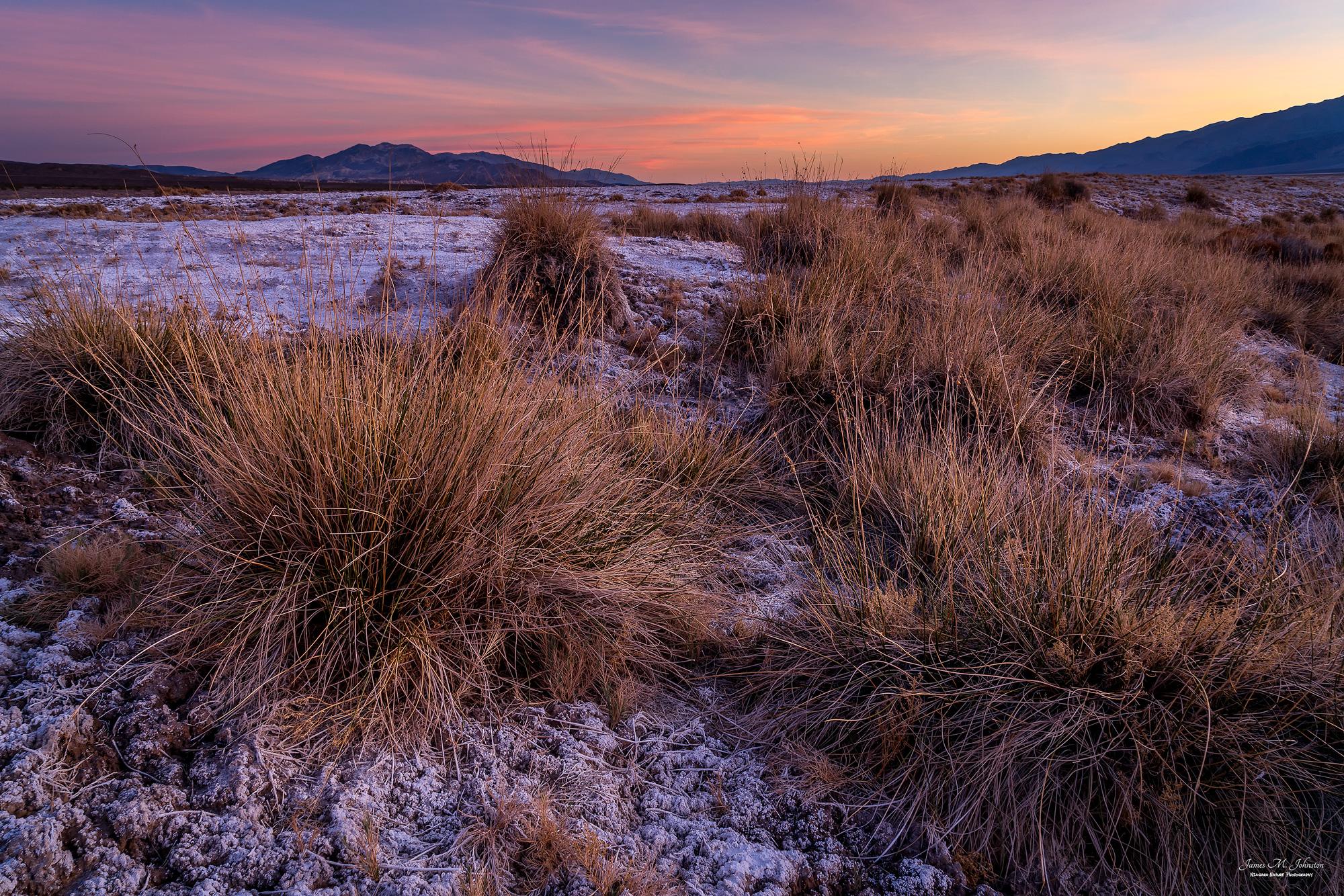 Cotton Bail Marsh Sunset
