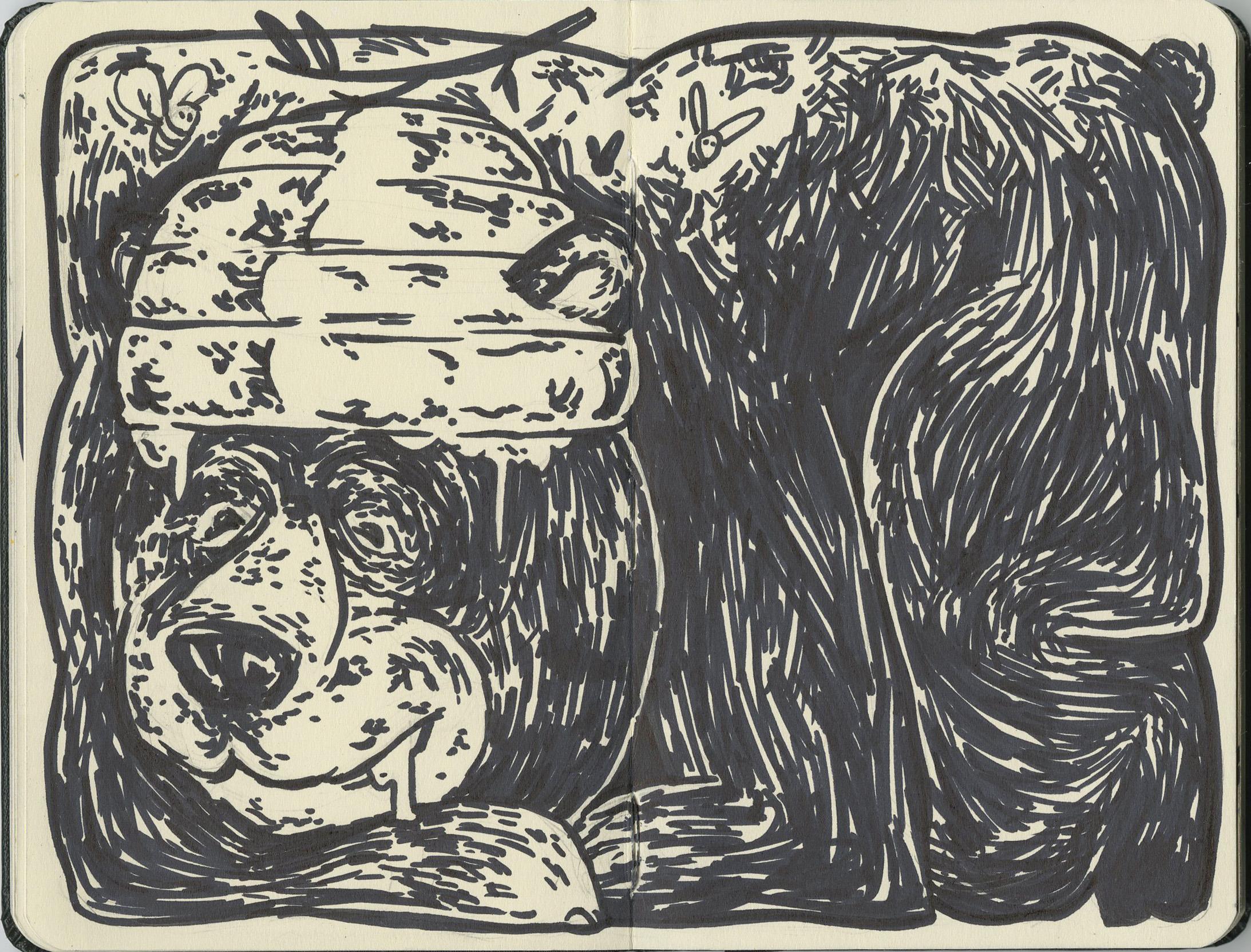 bearsketch.jpg