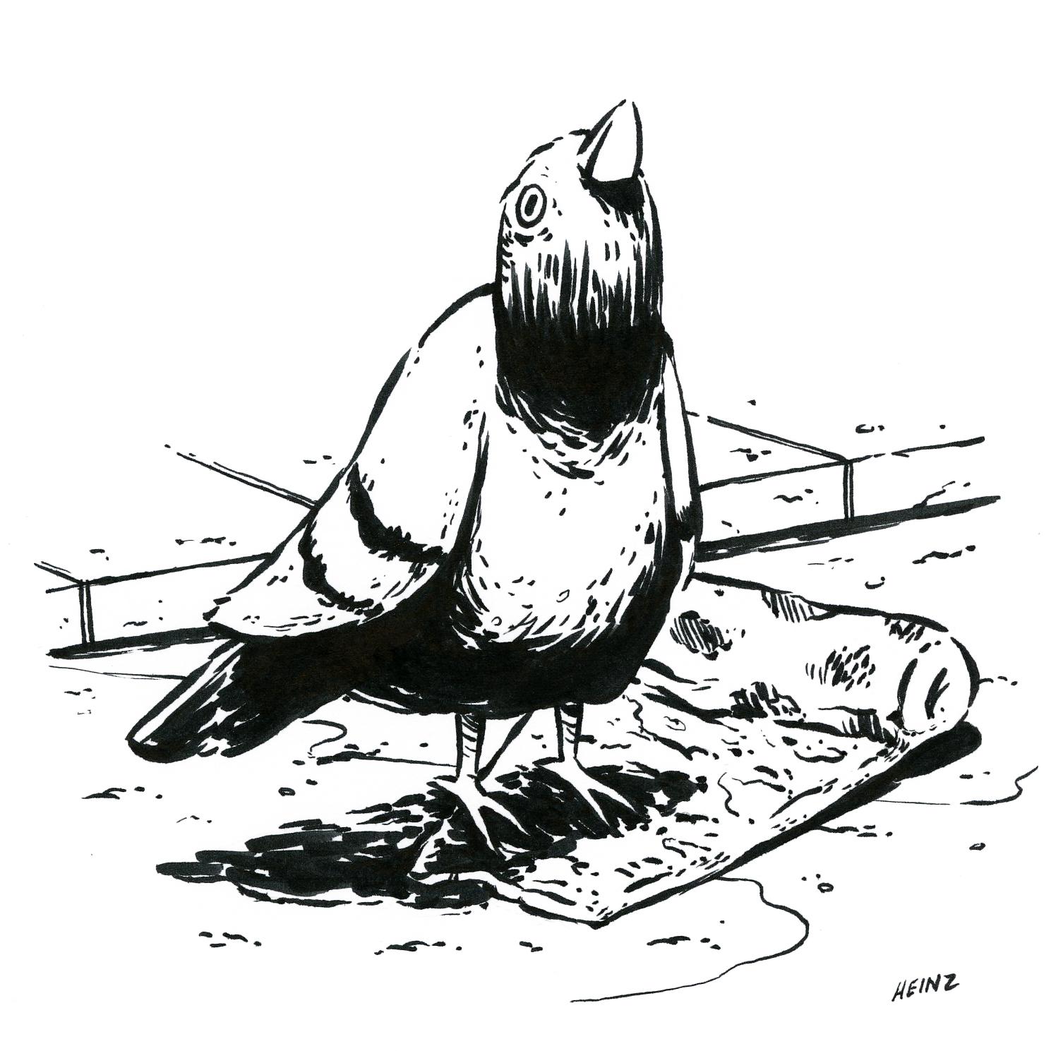 pigeonpizza.jpg