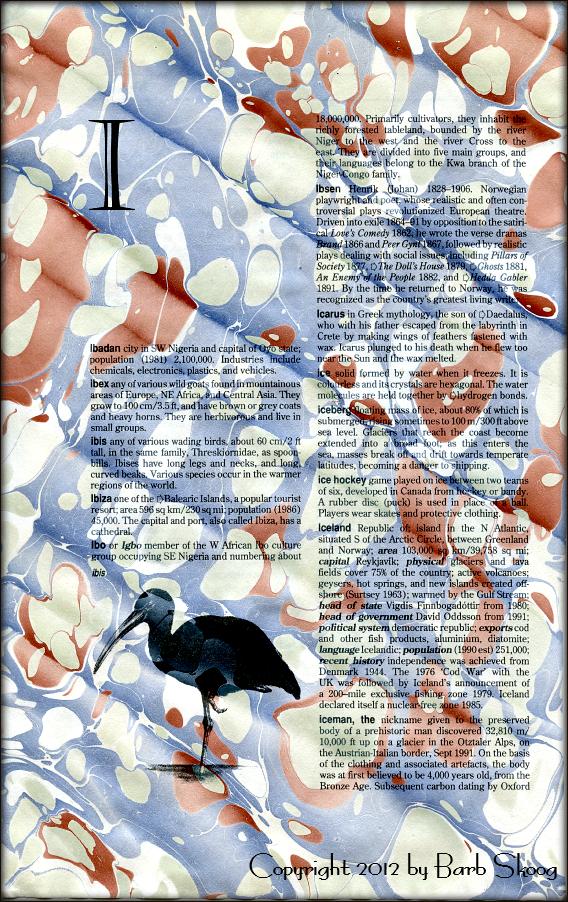 Barb Skoog Individual Papers 248.png