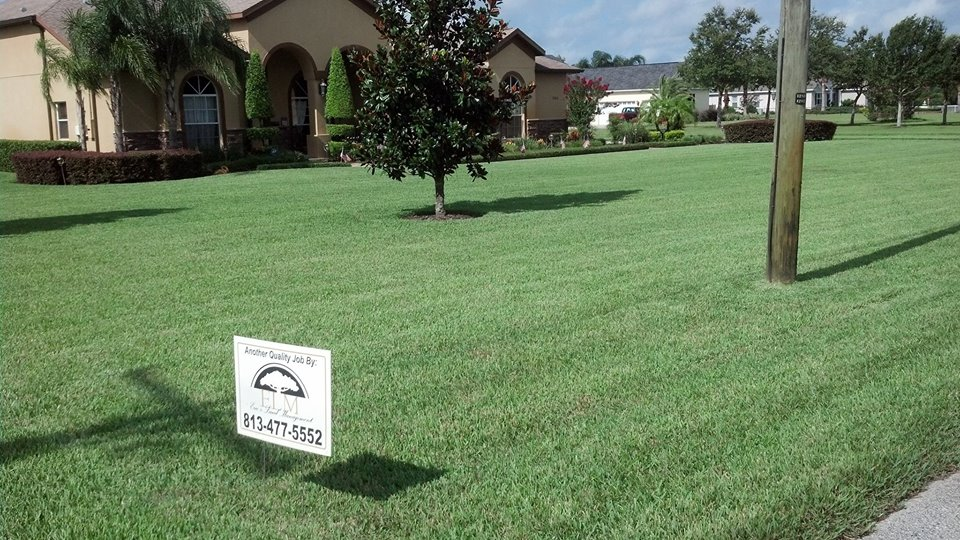 Eric's Land Management | Residential Lawn Service