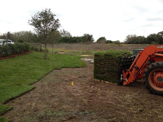 Eric's Land Management | Sod service