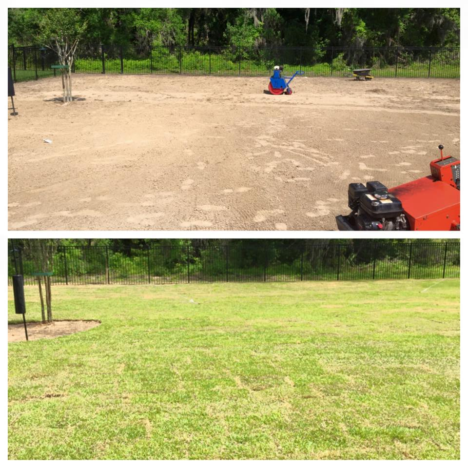 Eric's Land Management | Residential Lawn Care Service