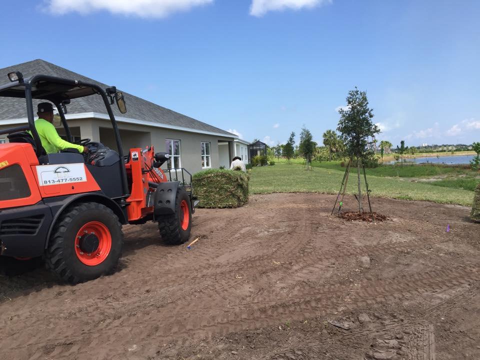 Eric's Land Management | 813-477-5552 | Sod Services