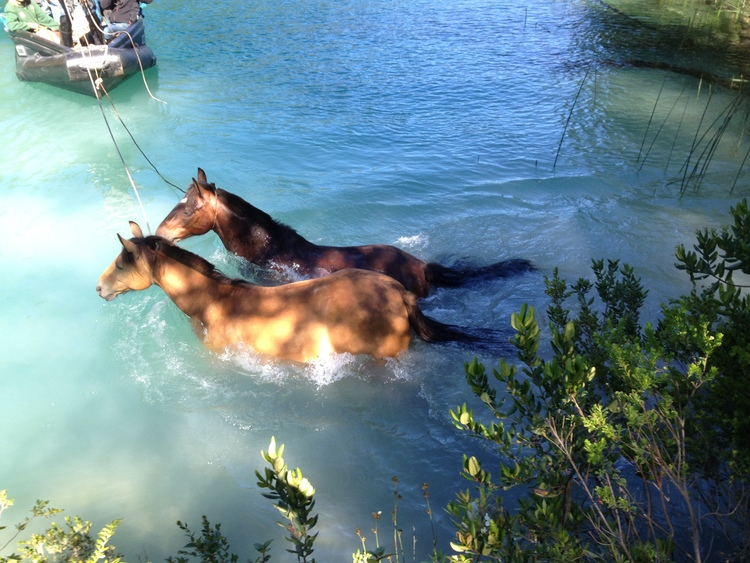 ride andes andean crossing chile argentina horse trek