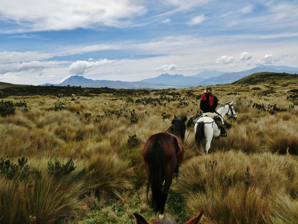 RIDE ANDES horse trek ecuador cotopaxi riding holiday