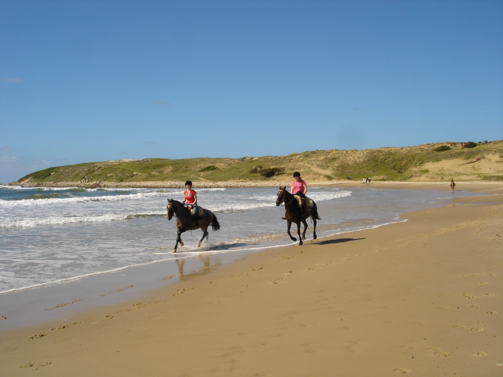 Uruguay RIDE ANDES canter up the beach.jpg