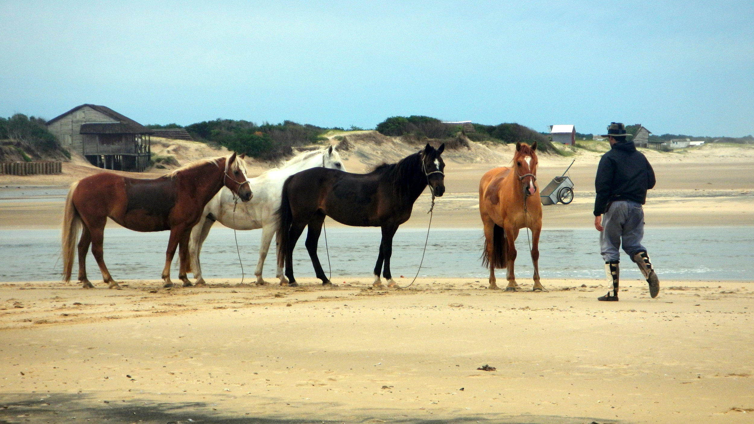 ride andes horse trek beach ride uruguay