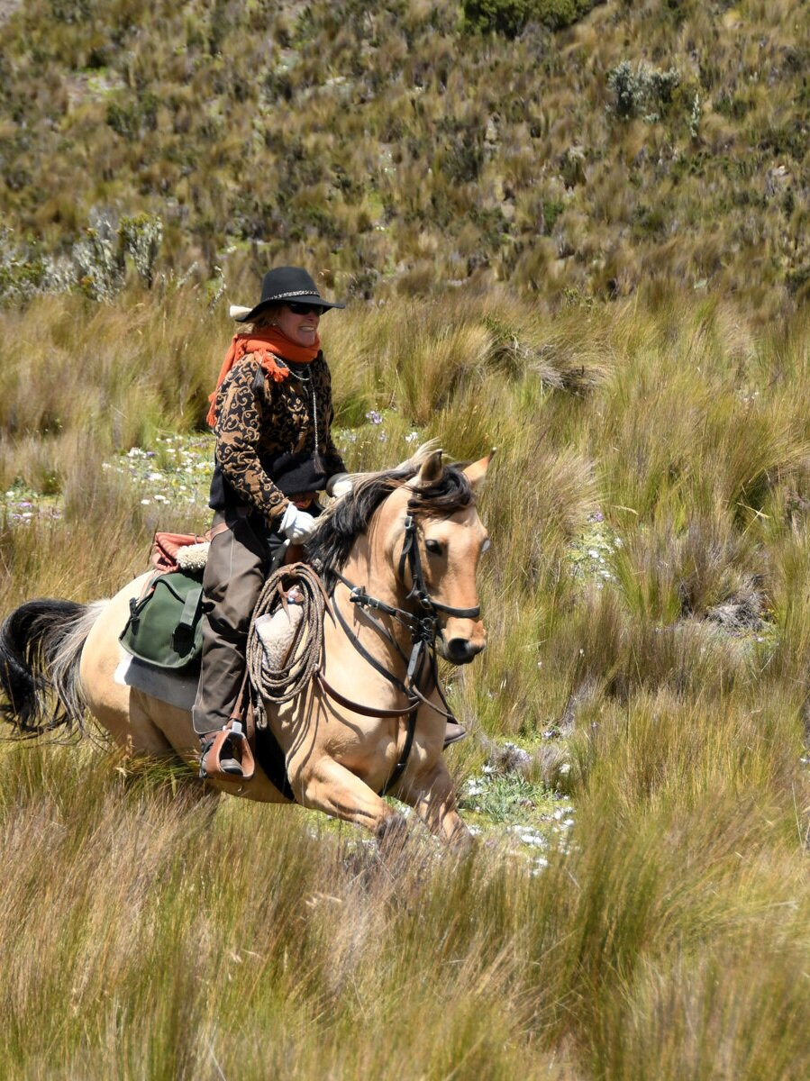 Spend Your Holidays in the Andes - We have space on the 28th December - 4th January Andean Adventure. Join usriding through spectacular scenery into the remote Andes - includingbeautiful pastoral valleys and the plains below the snow-capped CotopaxiVolcano. Ride with the wild horses, condors soaring overhead... contact usfor more details. rideandes@rideandes.com