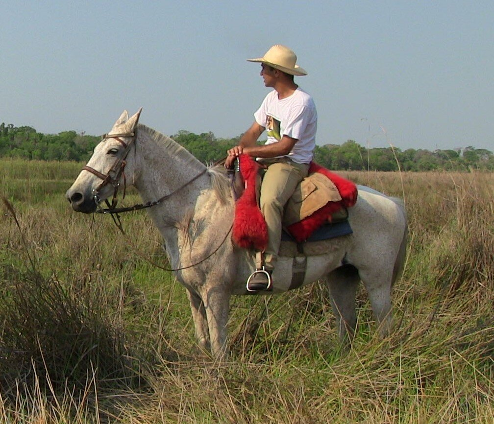 This is the Brazil Pantanal guide, Daniel  He is riding a horse called Mayonnaise  Daniel was born and brought up in the Pantanal, where we offer private rides and set date departures. This region is fascinating and teeming with wildlife and Daniel is passionate and very knowledgeable. Great rider, been guiding for many years.  Another expert wildlife guide also comes along if there are 'non riders' in the group