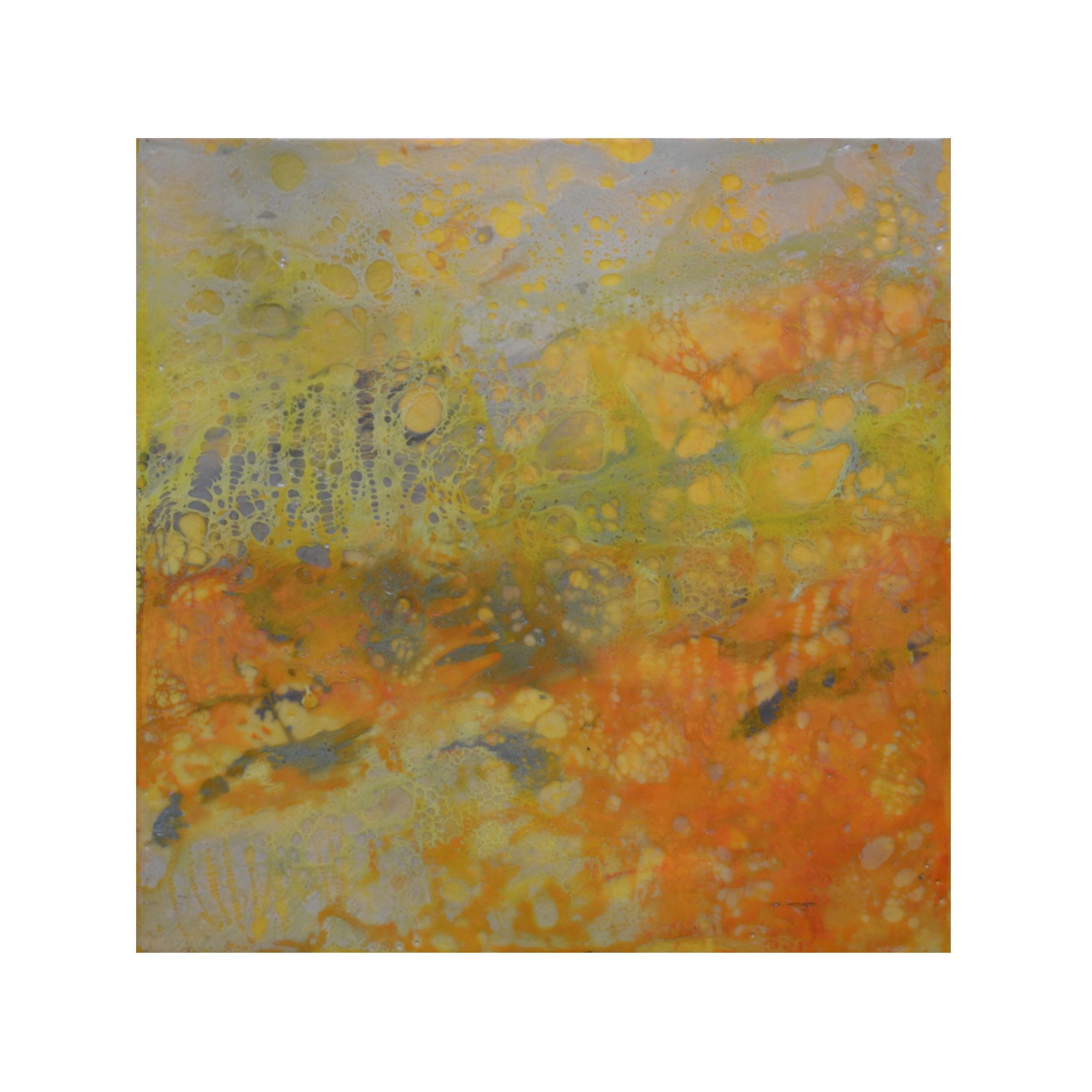 Amber Light   12 x 12  Encaustic on Panel  $300