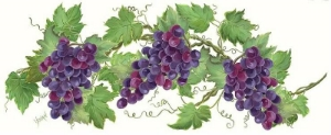 images_grapevines1.jpg