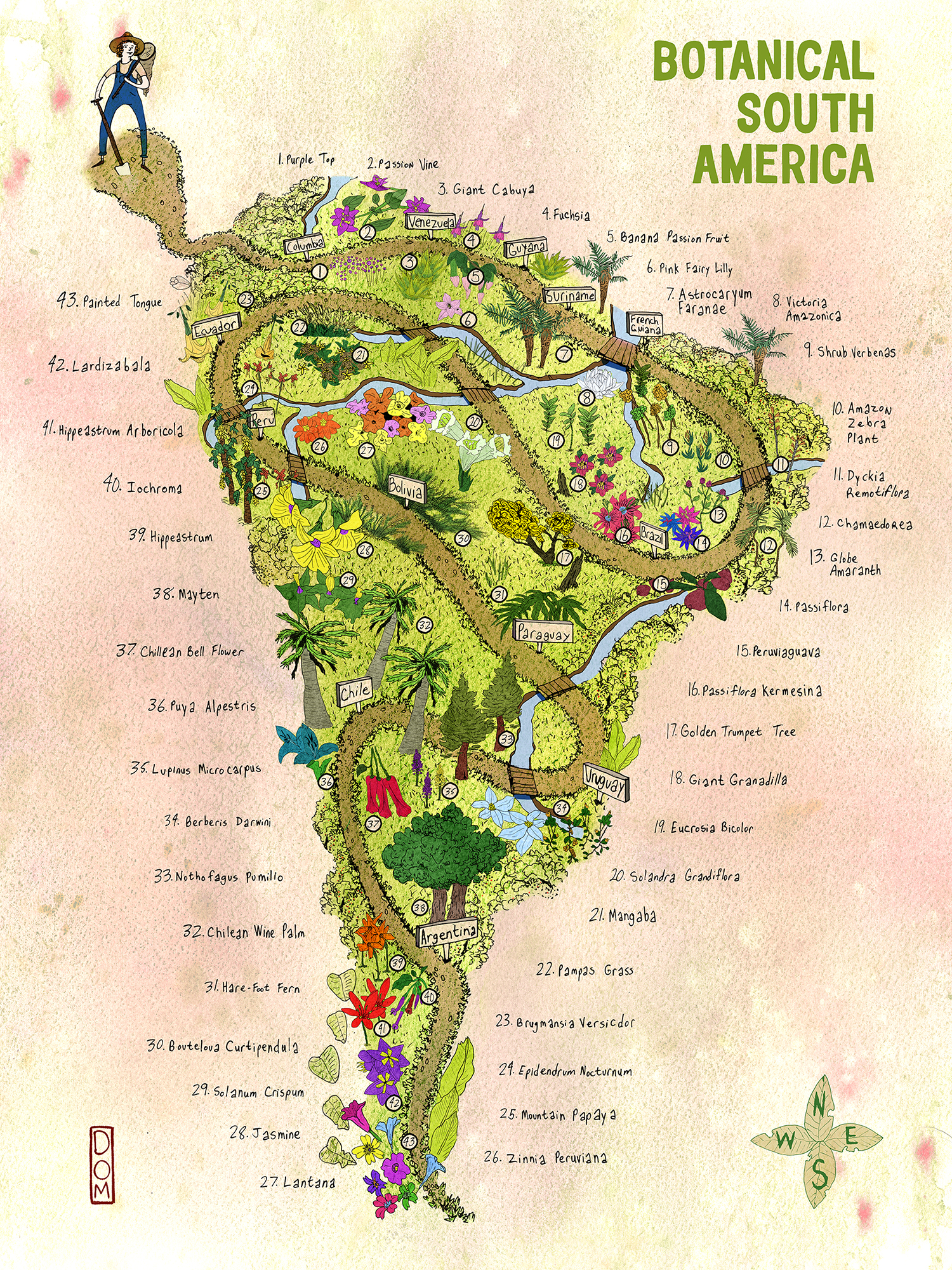 Dom_Civiello_Botanical_South_America _Map_Web.jpg