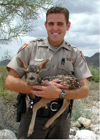 Wildlife agencies