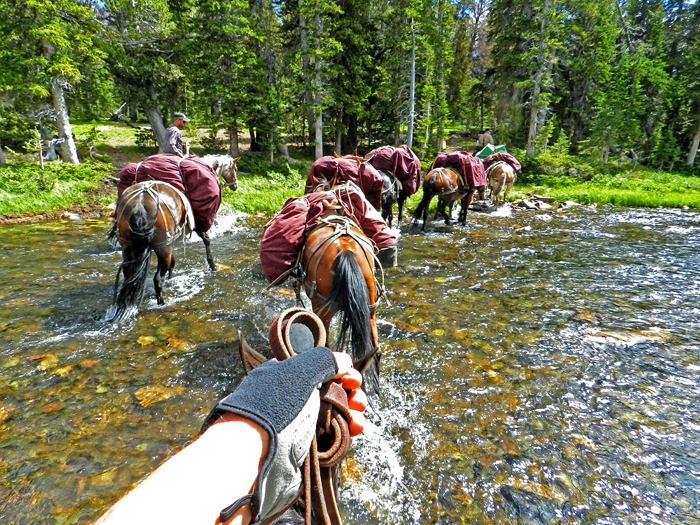 Outfitter / guide services photography