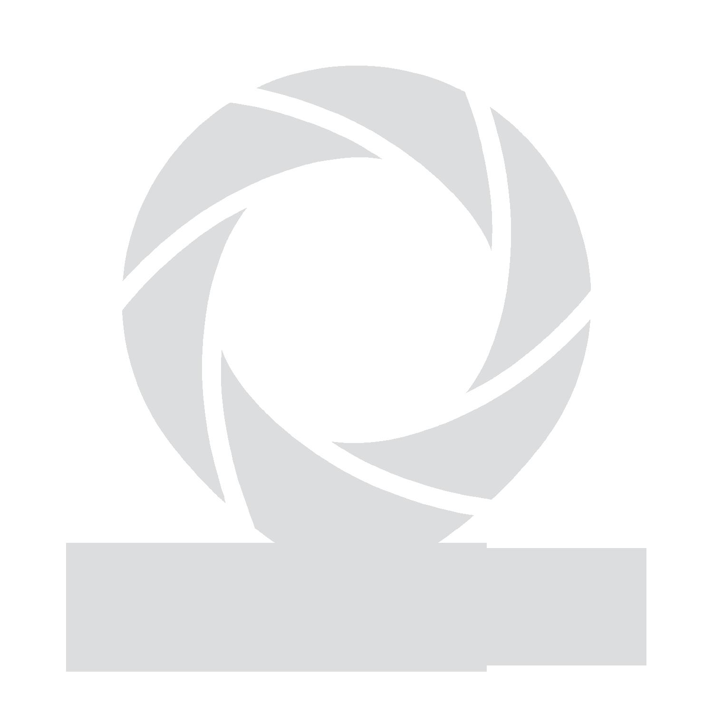 pixels in the house logo.jpg