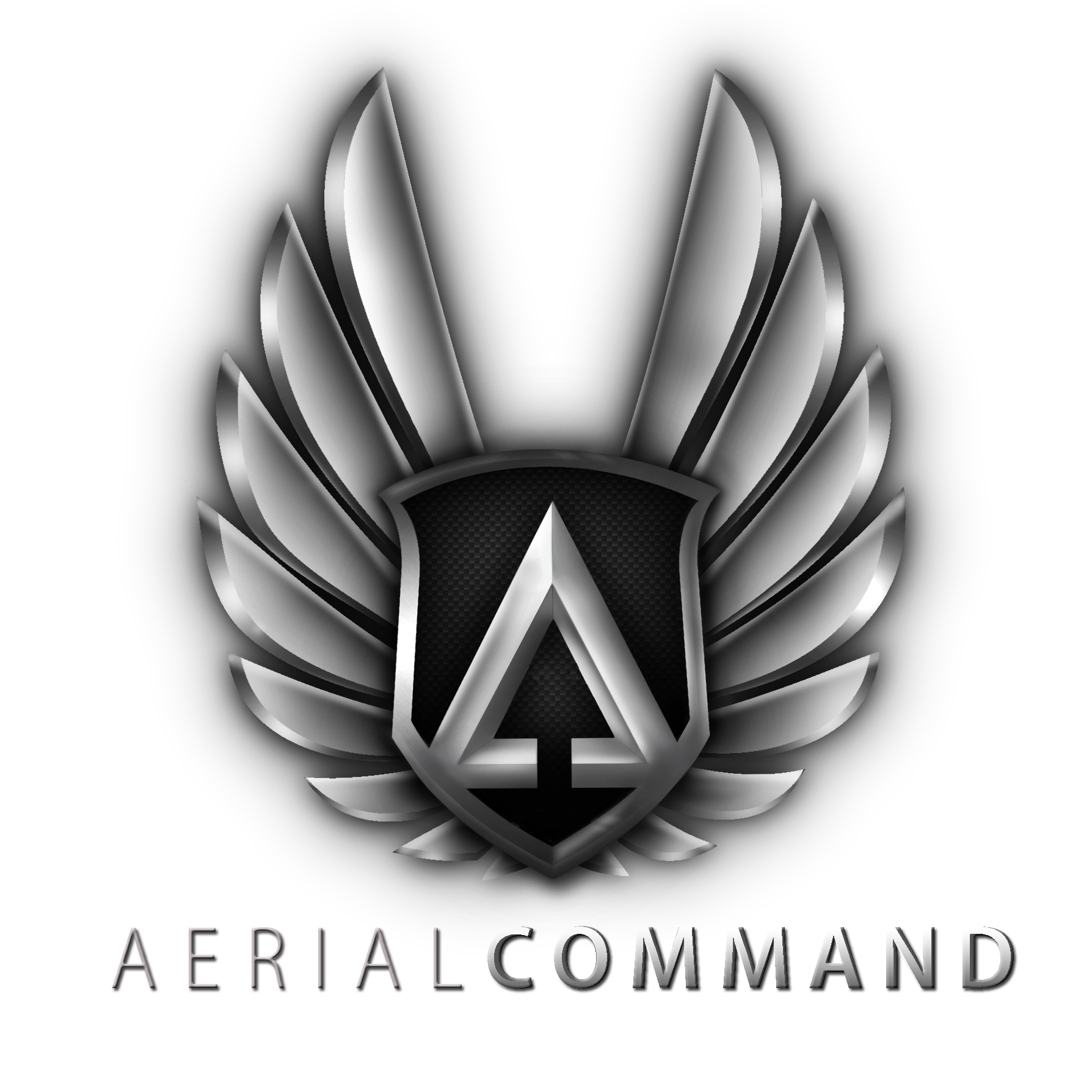 WHAT WE DO - Aerial Command Nashville is owned and operated by Warren Pettit, a FAA-certified drone pilot with 15 years flying experience. Our services include:- STOCK VIDEO LIBRARY: the most extensive library of 4k aerial video of Nashville and the middle Tennessee area.- CUSTOM VIDEO: on location shooting for any client.For professional, safe and courteous service, call 615.310.2660.