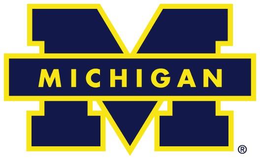 Michigan-2015-Supplemental-Essay-Questions.jpg