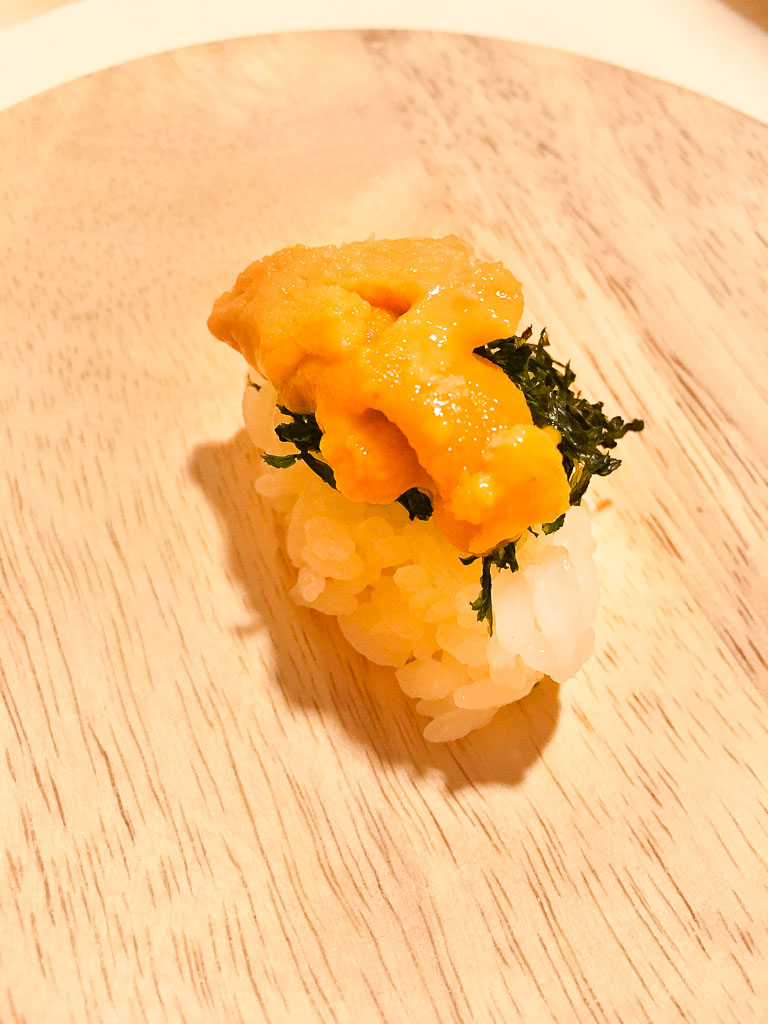 Course 5: Sea Urchin, 8/10