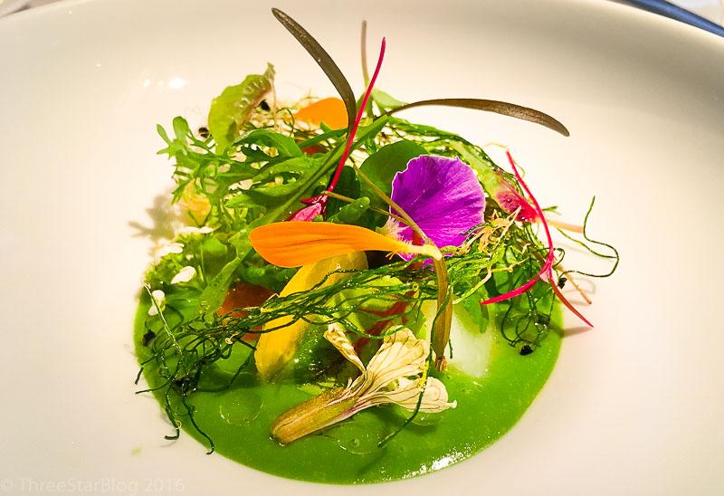 Course 2: Garden Salad, 9/10