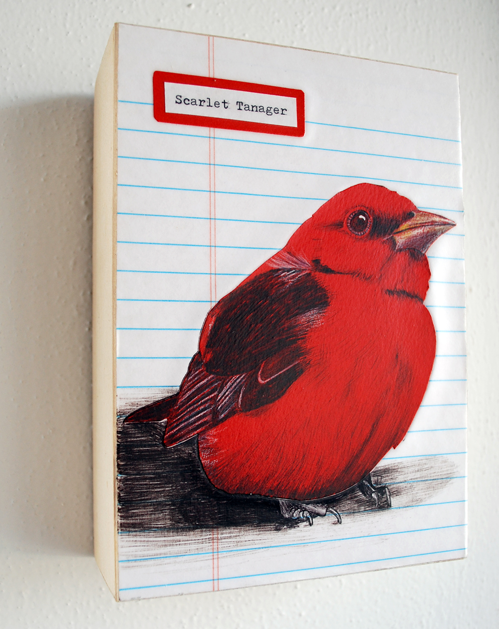 Scarlet Tanager - an original mixed media illustration. Click through to purchase.