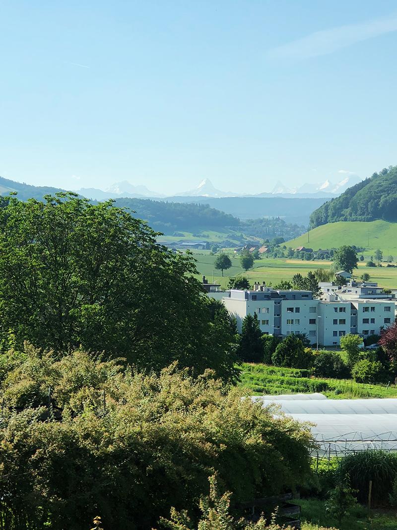 Alps-view-Stettlen.jpg