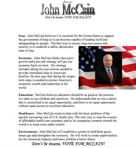 John McCain Flyer