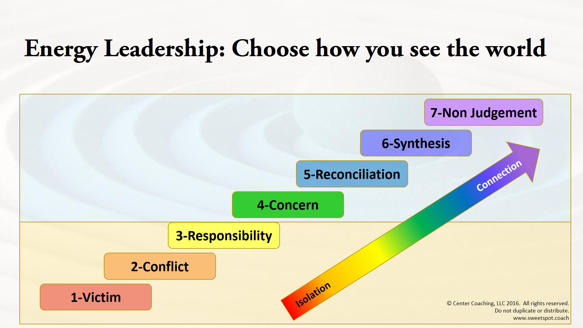 Energy Leadership.png