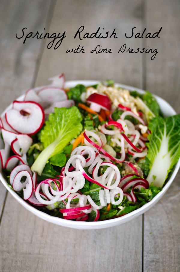 springy-radish-salad-bowl