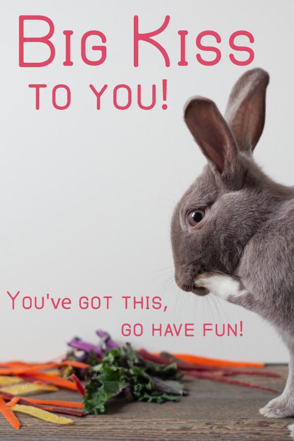 bunny-rabbit-big-kiss