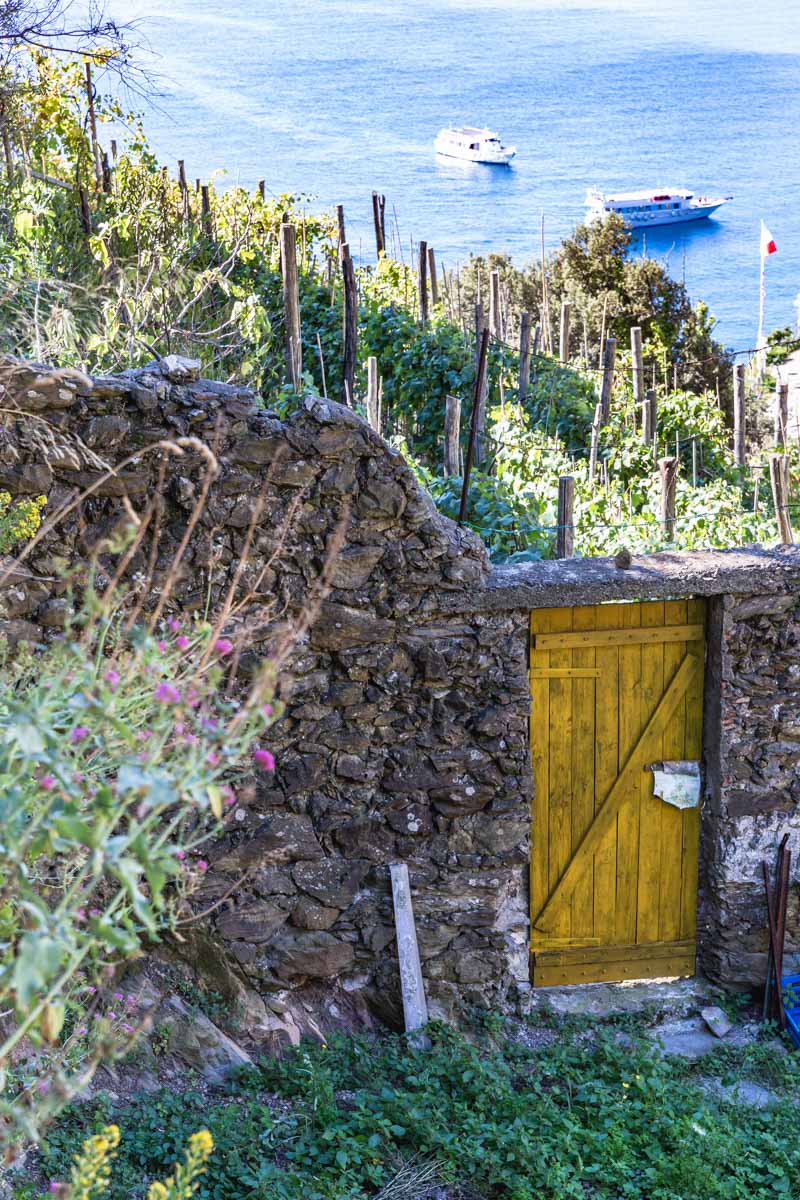 Vineyards and an old wall along the hiking trail from Monterosso al Mar to Vernazza, Cinque Terre, Italy. Photo by Kari | Beautiful Ingredient.
